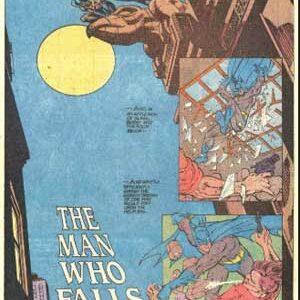 Batman: El hombre que cae de O'Neil y Giordano [1989]